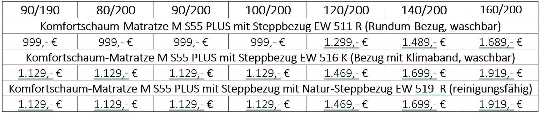 Werkmeister S70 Plus Preistabelle