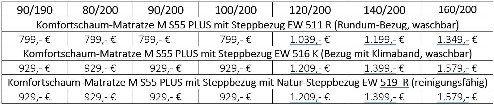 Werkmeister S55 Plus Preistabelle