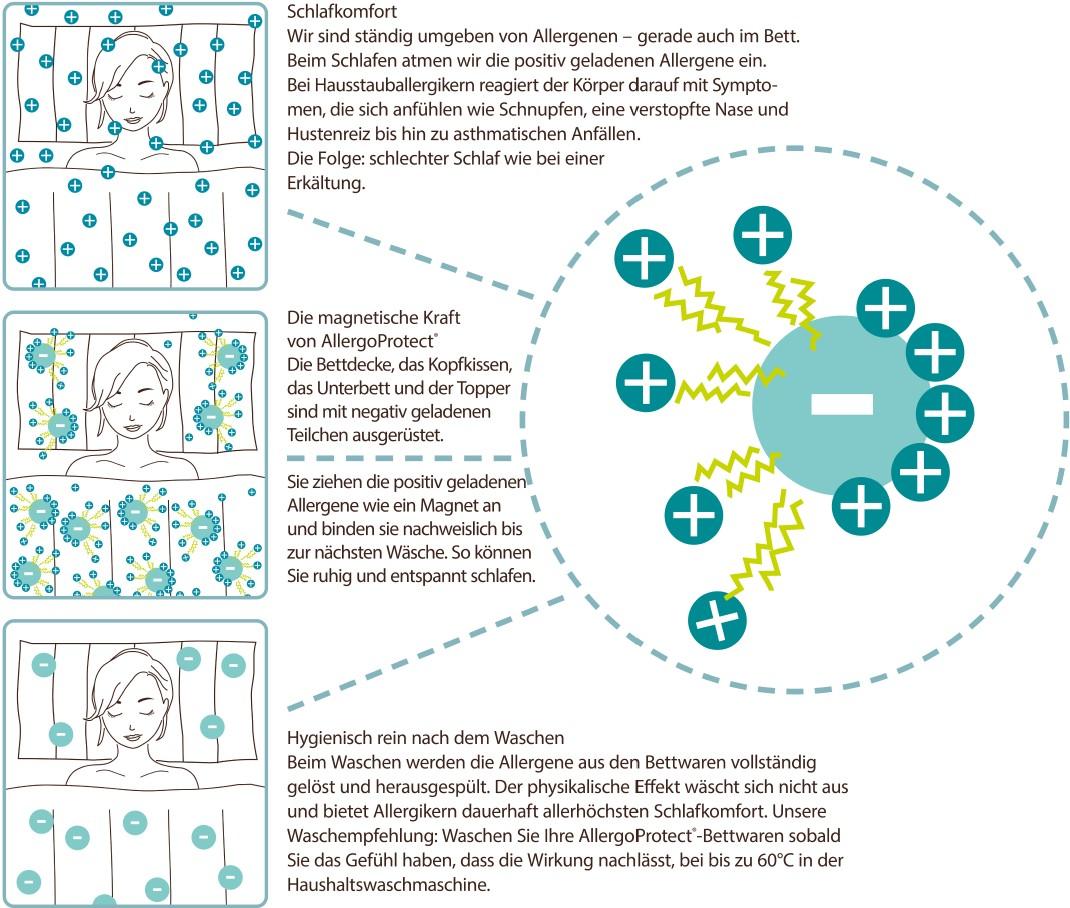 Allergo PROtec-aktiv - Wie funktioniert es - Ablauf